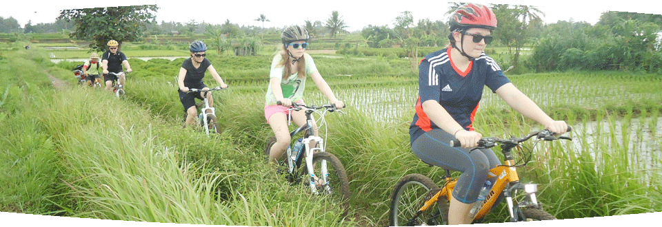Banyan Tree Bike Tours