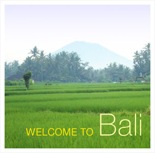 Come and Enjoy Bali